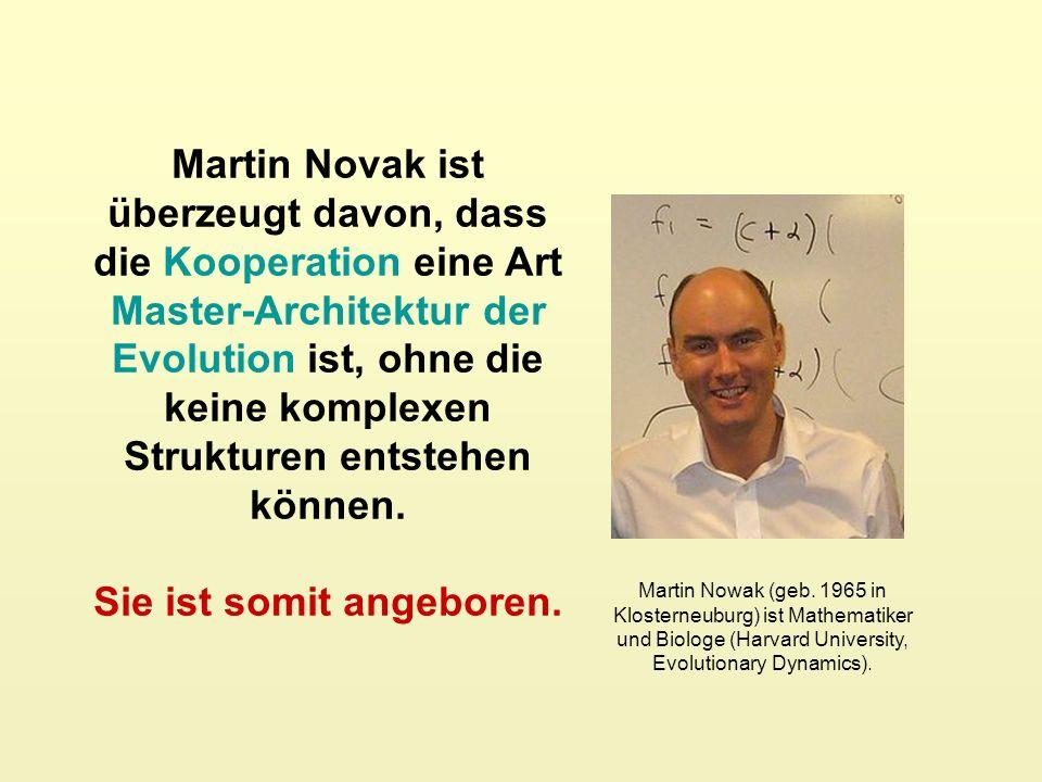 Martin Novak ist überzeugt davon, dass die Kooperation eine Art Master-Architektur der Evolution ist, ohne die keine komplexen Strukturen entstehen können.