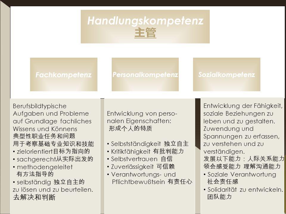 I.Büchner 30 Handlungskompetenz Fachkompetenz PersonalkompetenzSozialkompetenz Berufsbildtypische Aufgaben und Probleme auf Grundlage fachliches Wisse