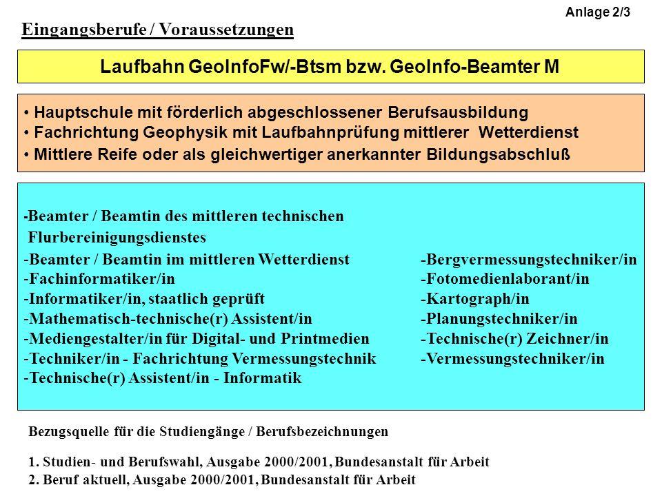 Laufbahn GeoInfoFw/-Btsm bzw.