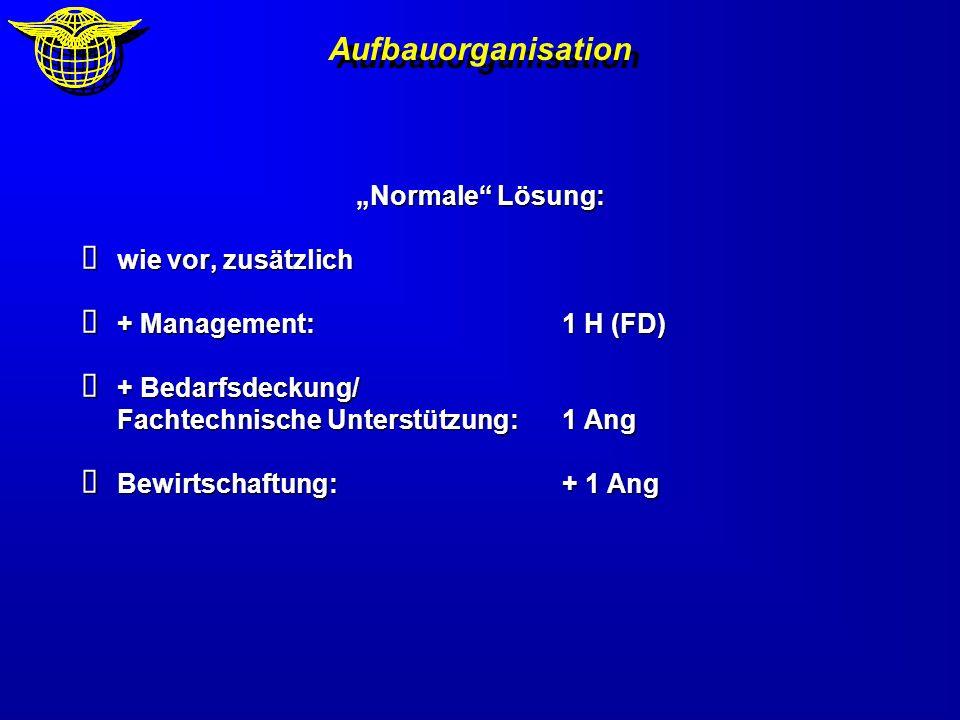Aufbauorganisation Normale Lösung: wie vor, zusätzlich wie vor, zusätzlich + Management:1 H (FD) + Management:1 H (FD) + Bedarfsdeckung/ Fachtechnisch