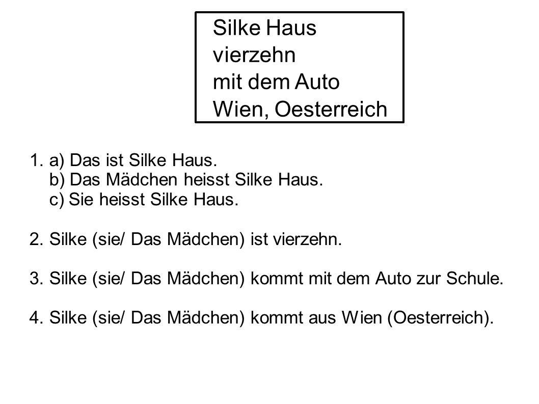 Silke Haus vierzehn mit dem Auto Wien, Oesterreich 1.