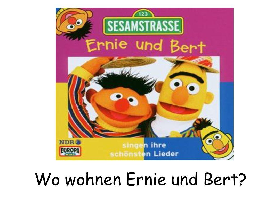 Ernie und Bert wohnen in der Sesamstrasse.