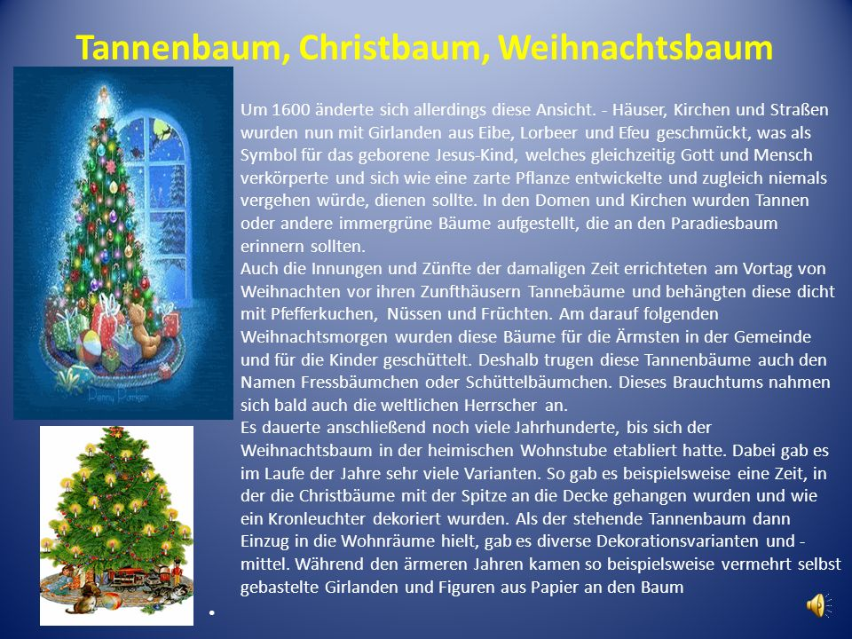 Tannenbaum, Christbaum, Weihnachtsbaum Um 1600 änderte sich allerdings diese Ansicht. - Häuser, Kirchen und Straßen wurden nun mit Girlanden aus Eibe,