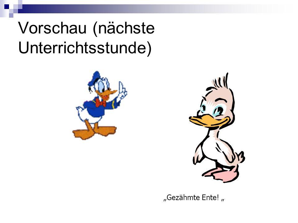 Vorschau (nächste Unterrichtsstunde) Gezähmte Ente!