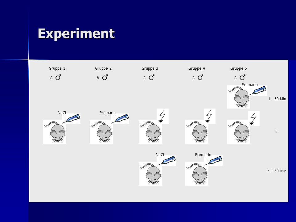 Experiment NaClPremarin NaCl t - 60 Min Premarin t t + 60 Min Gruppe 1Gruppe 2Gruppe 3Gruppe 4Gruppe 5 88888