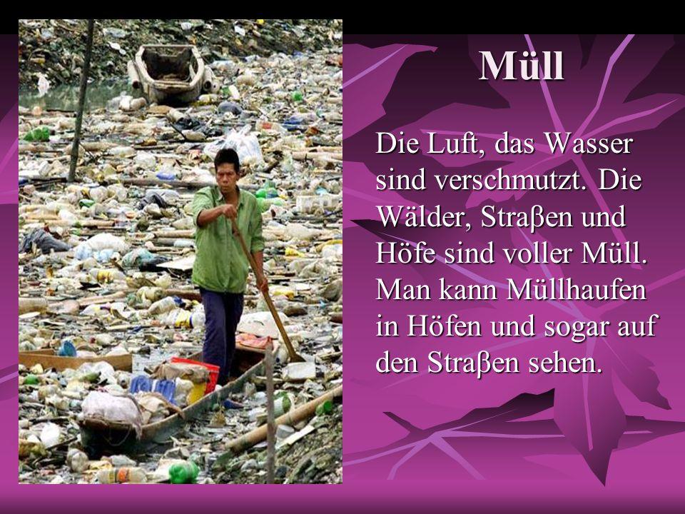 Müll Die Luft, das Wasser sind verschmutzt. Die Wälder, Straβen und Höfe sind voller Müll. Man kann Müllhaufen in Höfen und sogar auf den Straβen sehe
