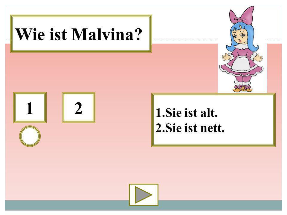 12 1.Sie ist alt. 2.Sie ist nett. Wie ist Malvina?
