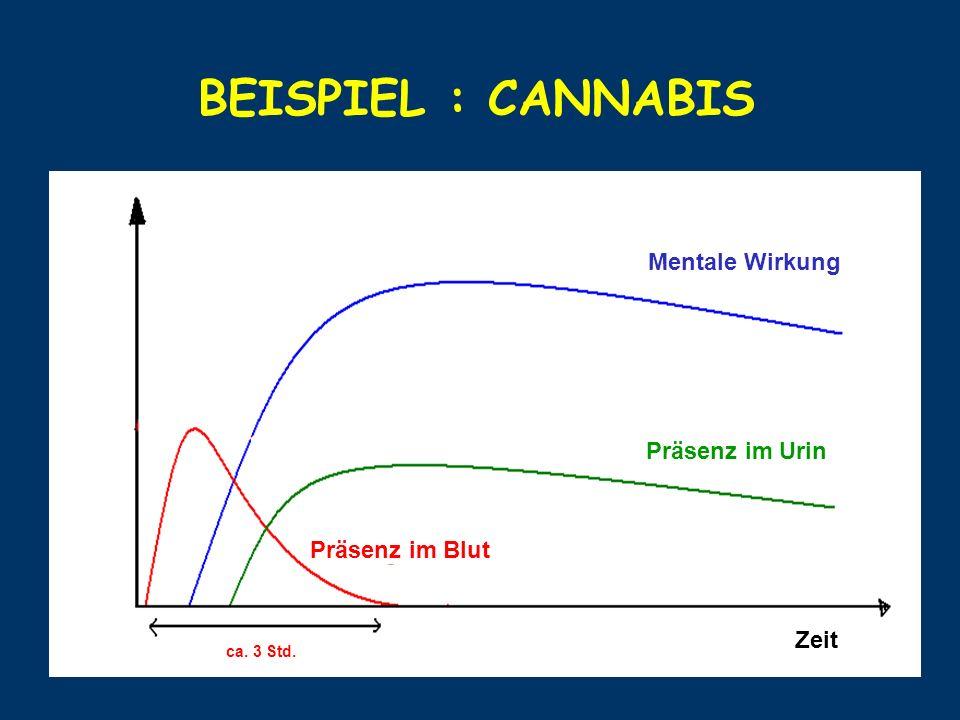 BEISPIEL : CANNABIS Mentale Wirkung Zeit ca. 3 Std. Präsenz im Blut Präsenz im Urin