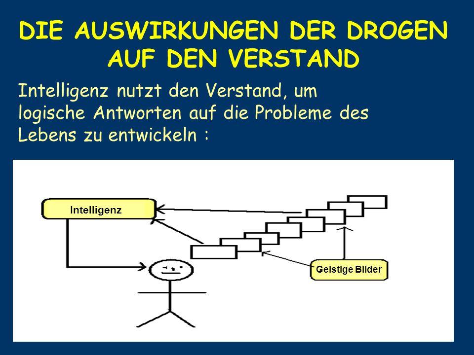 DIE AUSWIRKUNGEN DER DROGEN AUF DEN VERSTAND Intelligenz nutzt den Verstand, um logische Antworten auf die Probleme des Lebens zu entwickeln : Intelli