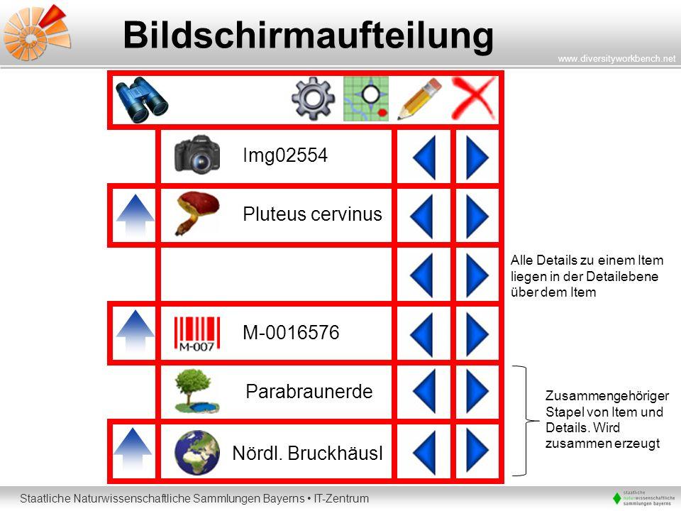 Staatliche Naturwissenschaftliche Sammlungen Bayerns IT-Zentrum www.diversityworkbench.net Bildschirmaufteilung Pluteus cervinus Nördl. Bruckhäusl Par