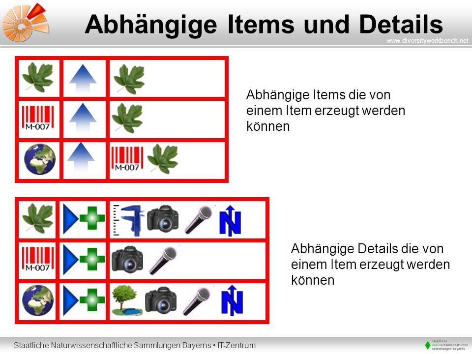 Staatliche Naturwissenschaftliche Sammlungen Bayerns IT-Zentrum www.diversityworkbench.net Abhängige Items und Details Abhängige Items die von einem I