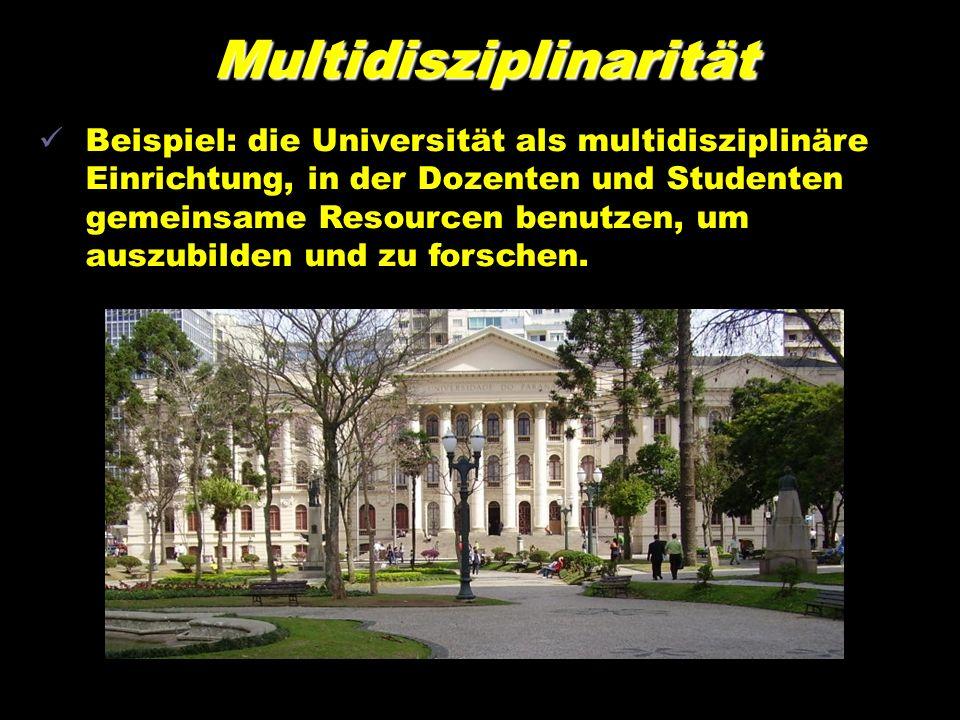 Multidisziplinarität Beispiel: die Universität als multidisziplinäre Einrichtung, in der Dozenten und Studenten gemeinsame Resourcen benutzen, um auszubilden und zu forschen.