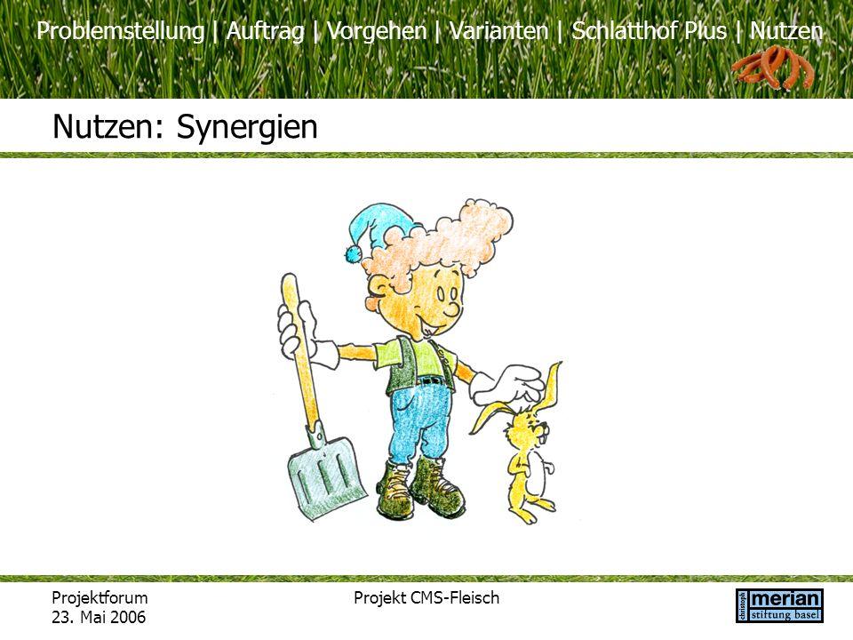 Problemstellung | Auftrag | Vorgehen | Varianten | Schlatthof Plus | Nutzen Projektforum 23. Mai 2006 Projekt CMS-Fleisch Nutzen: Synergien