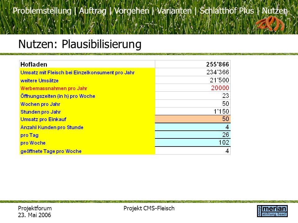 Problemstellung | Auftrag | Vorgehen | Varianten | Schlatthof Plus | Nutzen Projektforum 23. Mai 2006 Projekt CMS-Fleisch Nutzen: Plausibilisierung