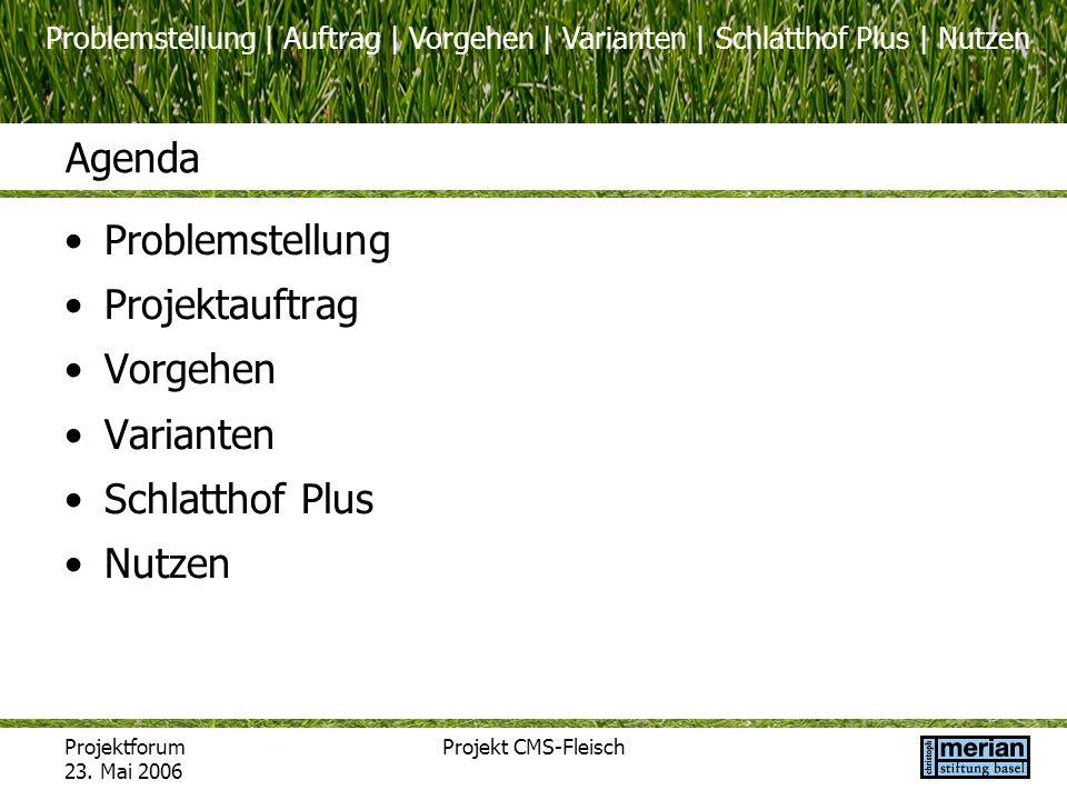 Projektforum 23. Mai 2006 Projekt CMS-Fleisch Agenda Problemstellung Projektauftrag Vorgehen Varianten Schlatthof Plus Nutzen Problemstellung | Auftra
