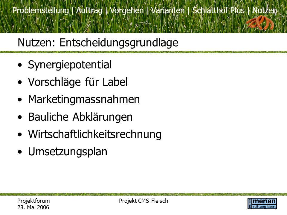 Problemstellung | Auftrag | Vorgehen | Varianten | Schlatthof Plus | Nutzen Projektforum 23. Mai 2006 Projekt CMS-Fleisch Nutzen: Entscheidungsgrundla