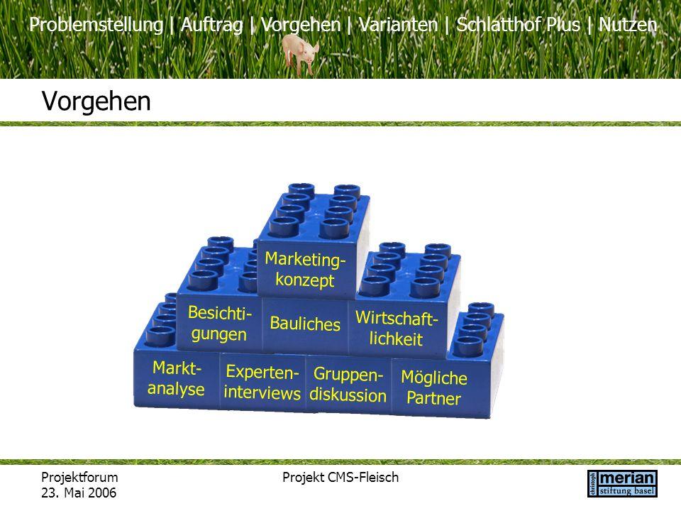 Problemstellung | Auftrag | Vorgehen | Varianten | Schlatthof Plus | Nutzen Projektforum 23. Mai 2006 Projekt CMS-Fleisch Vorgehen Markt- analyse Expe