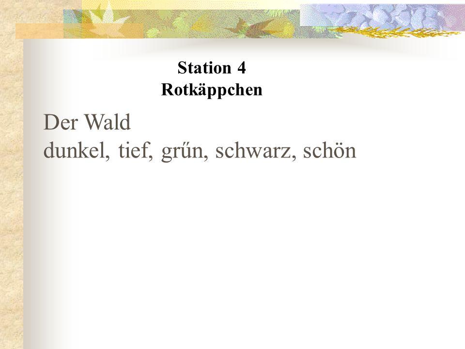 Station 4 Rotkäppchen Der Wald dunkel, tief, grűn, schwarz, schön