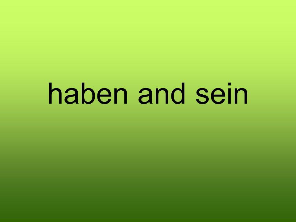 haben and sein