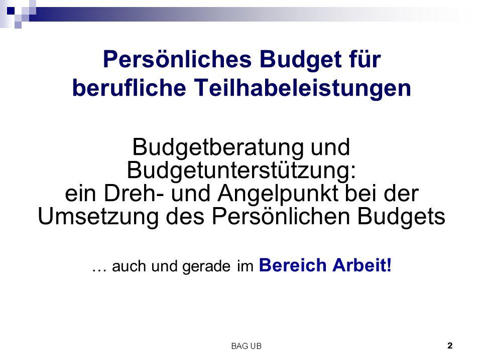 BAG UB2 Persönliches Budget für berufliche Teilhabeleistungen Budgetberatung und Budgetunterstützung: ein Dreh- und Angelpunkt bei der Umsetzung des P
