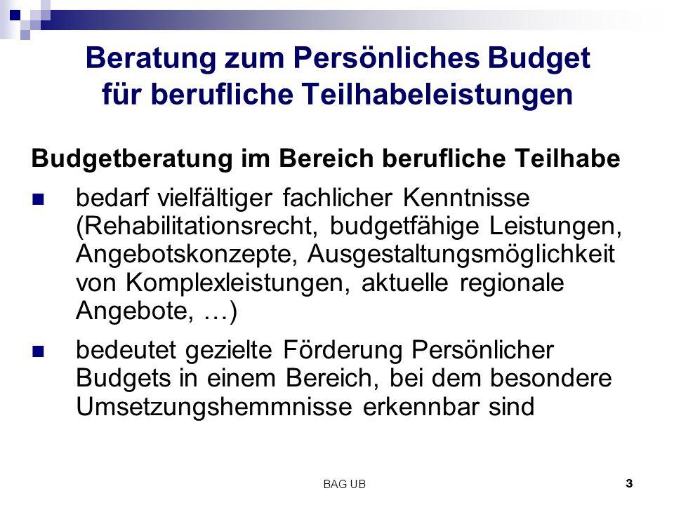 BAG UB3 Beratung zum Persönliches Budget für berufliche Teilhabeleistungen Budgetberatung im Bereich berufliche Teilhabe bedarf vielfältiger fachliche