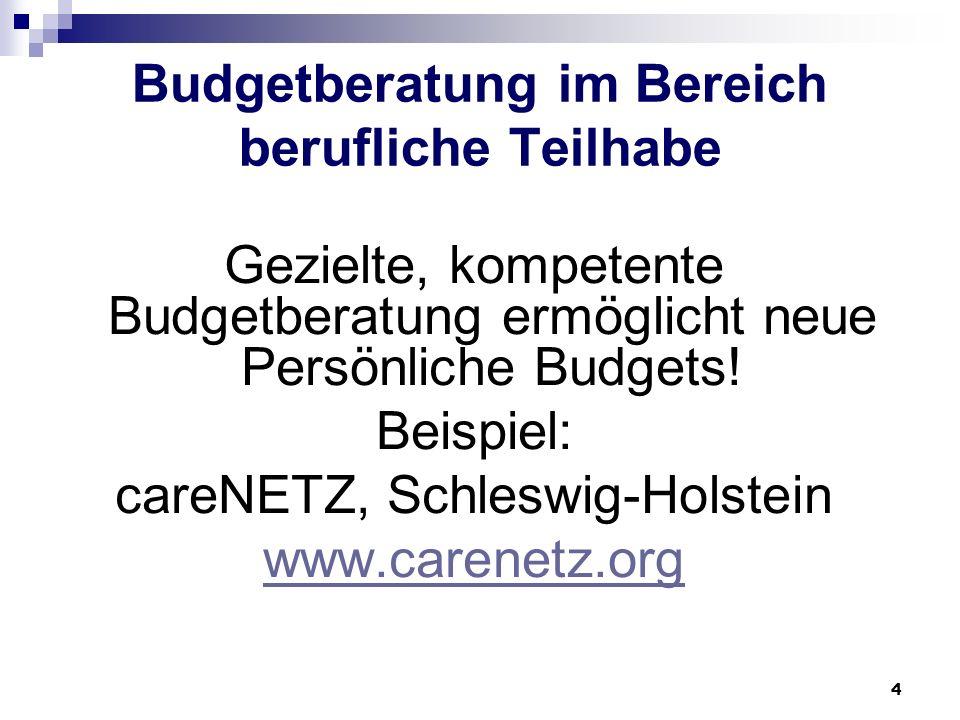 4 Budgetberatung im Bereich berufliche Teilhabe Gezielte, kompetente Budgetberatung ermöglicht neue Persönliche Budgets! Beispiel: careNETZ, Schleswig