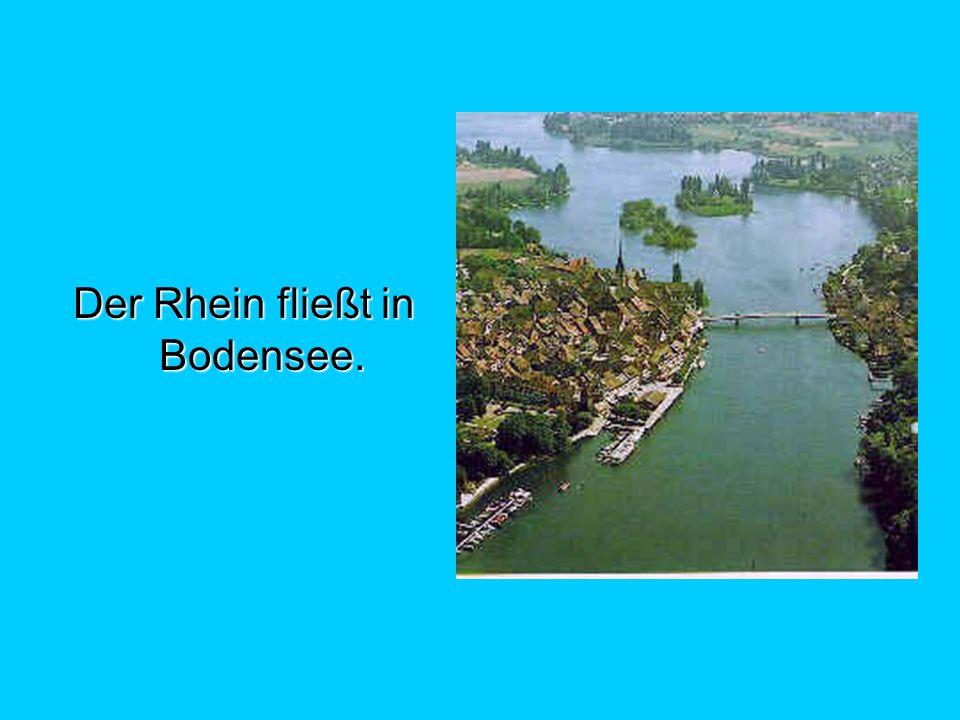 Der Rhein fließt in Bodensee.
