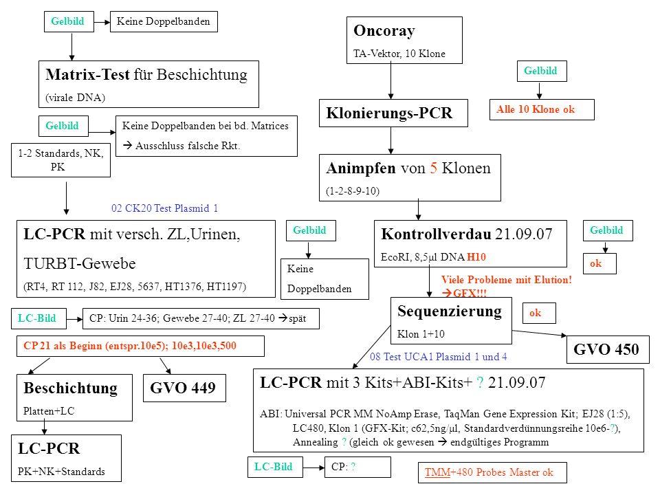 Keine DoppelbandenGelbild LC-PCR mit versch. ZL,Urinen, TURBT-Gewebe (RT4, RT 112, J82, EJ28, 5637, HT1376, HT1197) GelbildKeine Doppelbanden bei bd.