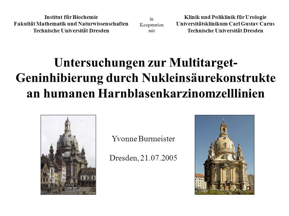 Klinik und Poliklinik für Urologie Universitätsklinikum Carl Gustav Carus Technische Universität Dresden Institut für Biochemie Fakultät Mathematik un