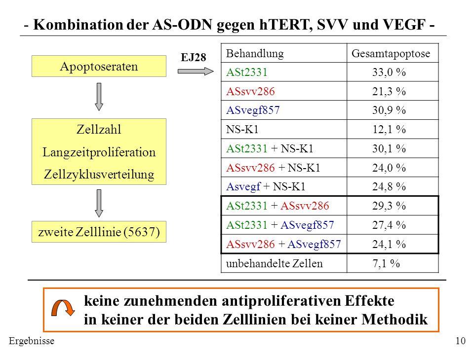 Apoptoseraten Zellzahl Langzeitproliferation Zellzyklusverteilung EJ28 - Kombination der AS-ODN gegen hTERT, SVV und VEGF - BehandlungGesamtapoptose A