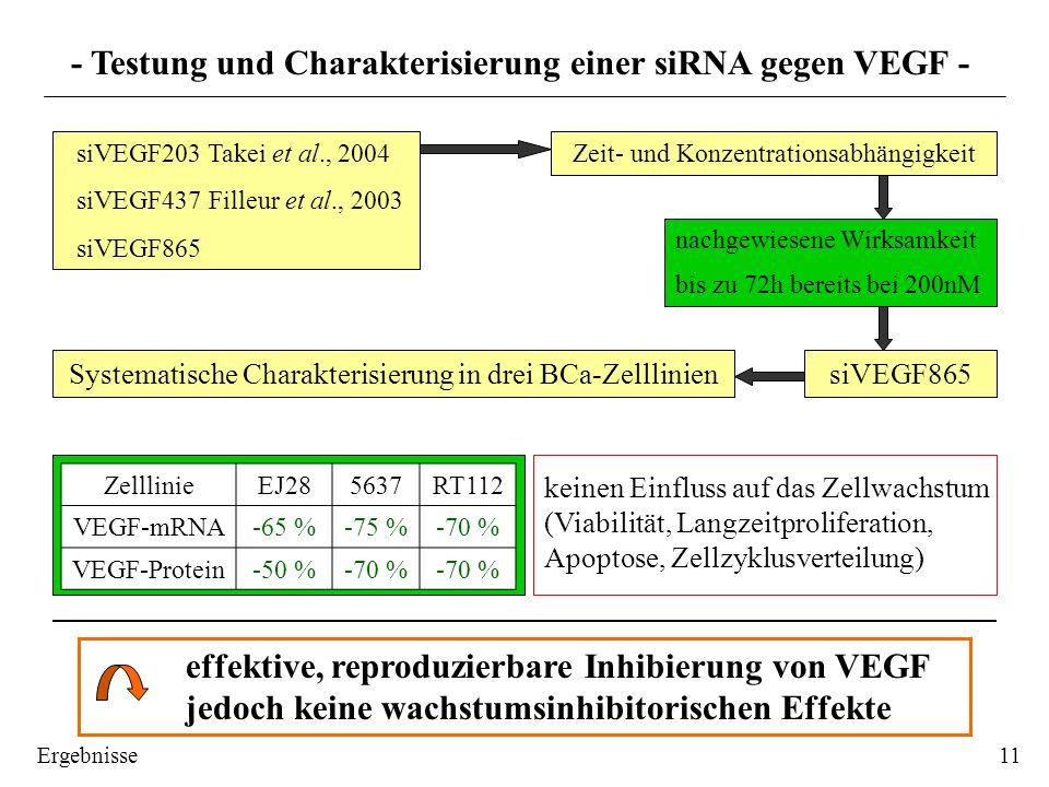 nachgewiesene Wirksamkeit bis zu 72h bereits bei 200nM Zeit- und Konzentrationsabhängigkeit siVEGF203 Takei et al., 2004 siVEGF437 Filleur et al., 200