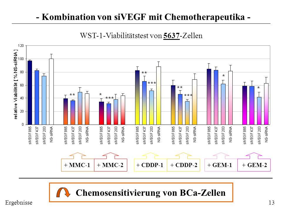 - Kombination von siVEGF mit Chemotherapeutika - + MMC-1 + MMC-2 + CDDP-1 + CDDP-2 + GEM-1 + GEM-2 Chemosensitivierung von BCa-Zellen WST-1-Viabilität