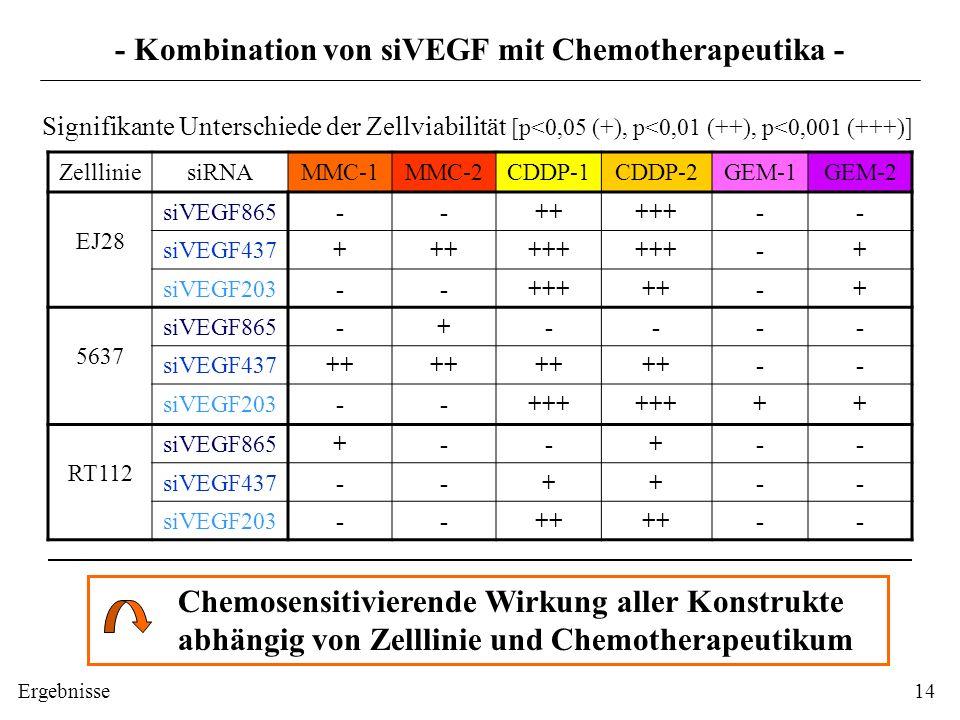 ZellliniesiRNAMMC-1MMC-2CDDP-1CDDP-2GEM-1GEM-2 EJ28 siVEGF865--+++++-- siVEGF437++++++ -+ siVEGF203--+++++-+ 5637 siVEGF865-+---- siVEGF437++ -- siVEG