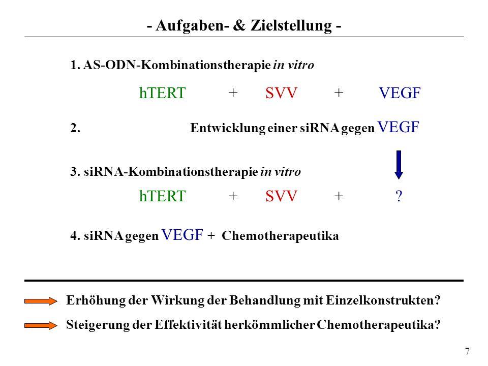 1. AS-ODN-Kombinationstherapie in vitro hTERT +SVV + VEGF 2. Entwicklung einer siRNA gegen VEGF 3. siRNA-Kombinationstherapie in vitro hTERT +SVV + ?
