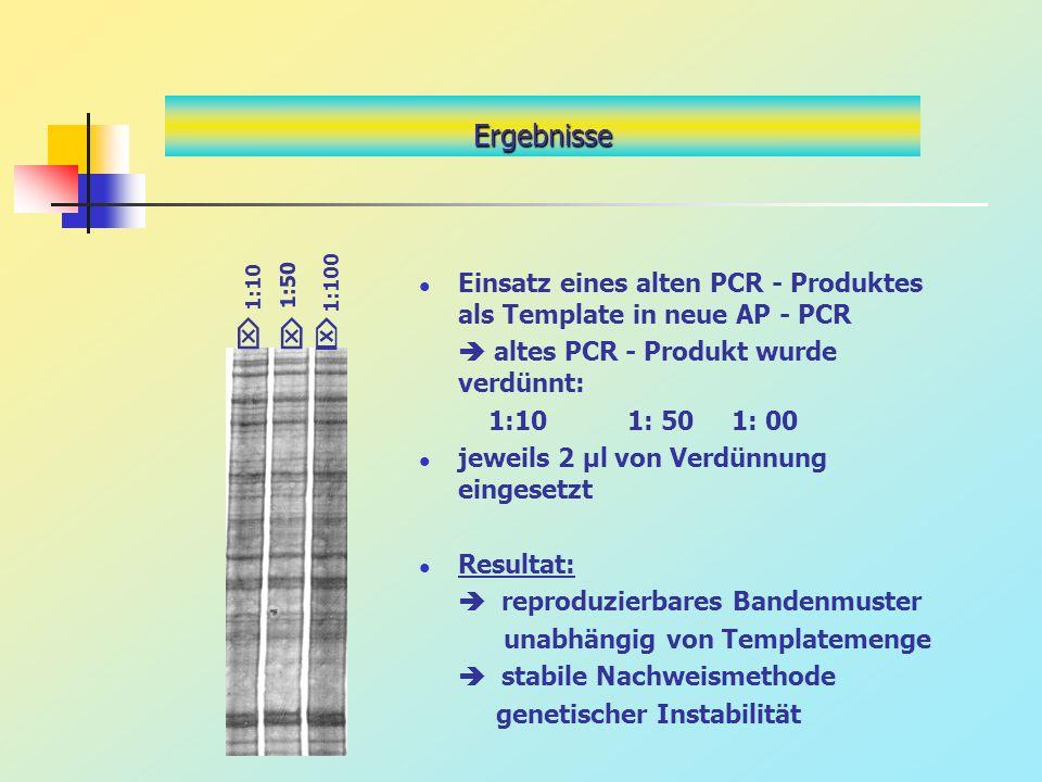 Einsatz eines alten PCR - Produktes als Template in neue AP - PCR altes PCR - Produkt wurde verdünnt: 1:101: 501: 00 jeweils 2 µl von Verdünnung einge