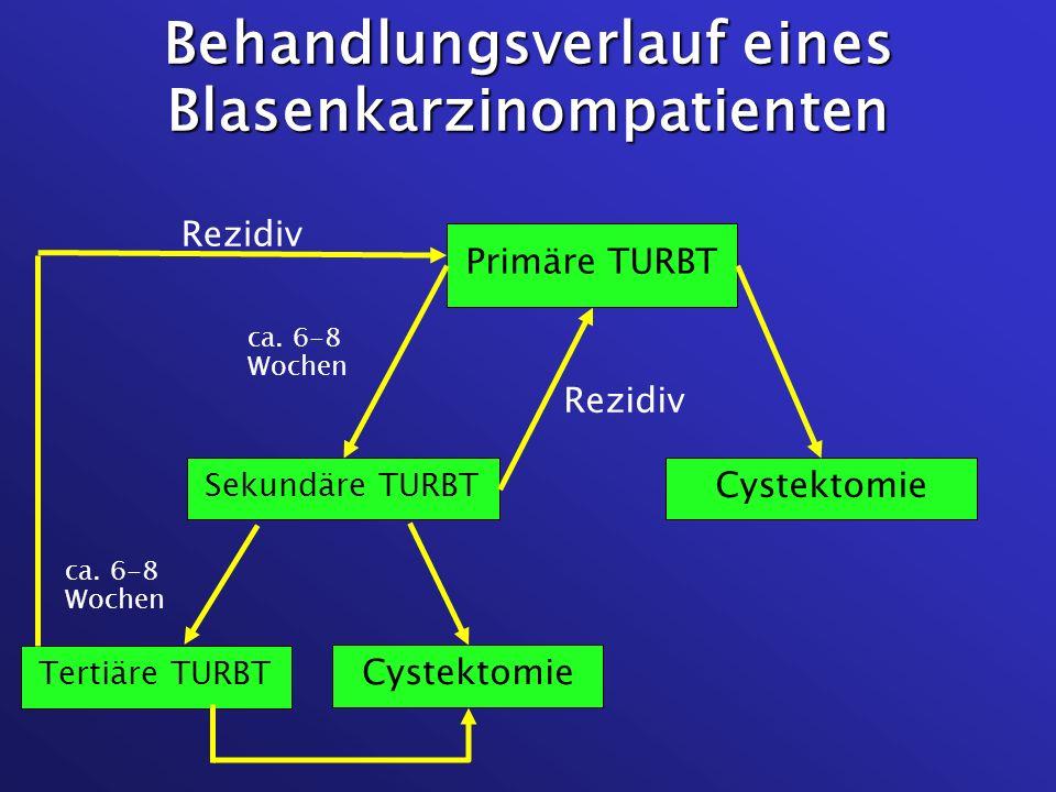 Behandlungsverlauf eines Blasenkarzinompatienten Primäre TURBT Cystektomie Sekundäre TURBT Tertiäre TURBT Cystektomie ca. 6-8 Wochen Rezidiv