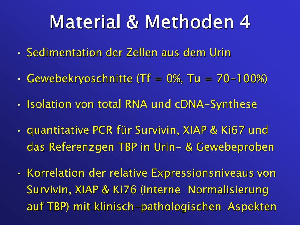 Material & Methoden 4 Sedimentation der Zellen aus dem UrinSedimentation der Zellen aus dem Urin Gewebekryoschnitte (Tf = 0%, Tu = 70-100%)Gewebekryos