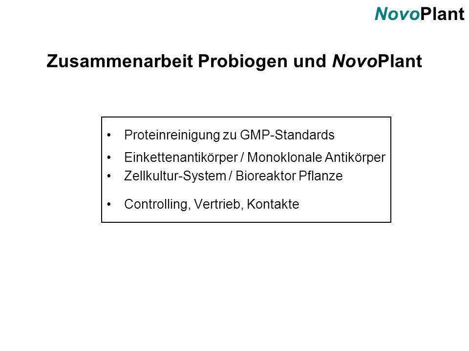 NovoPlant Zusammenarbeit Probiogen und NovoPlant Proteinreinigung zu GMP-Standards Einkettenantikörper / Monoklonale Antikörper Zellkultur-System / Bi