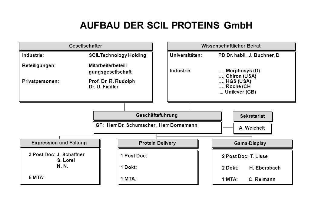 AUFBAU DER SCIL PROTEINS GmbH Gesellschafter Wissenschaftlicher Beirat Industrie:SCILTechnology Holding Beteiligungen: Mitarbeiterbeteili- gungsgesellschaft Privatpersonen:Prof.