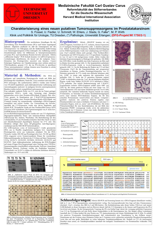Charakterisierung eines neuen putativen Tumorsuppressorgens im Prostatatakarzinom S. Füssel, U. Fiedler, U. Schmidt, W. Ehlers, J. Stade, G. Faller*,