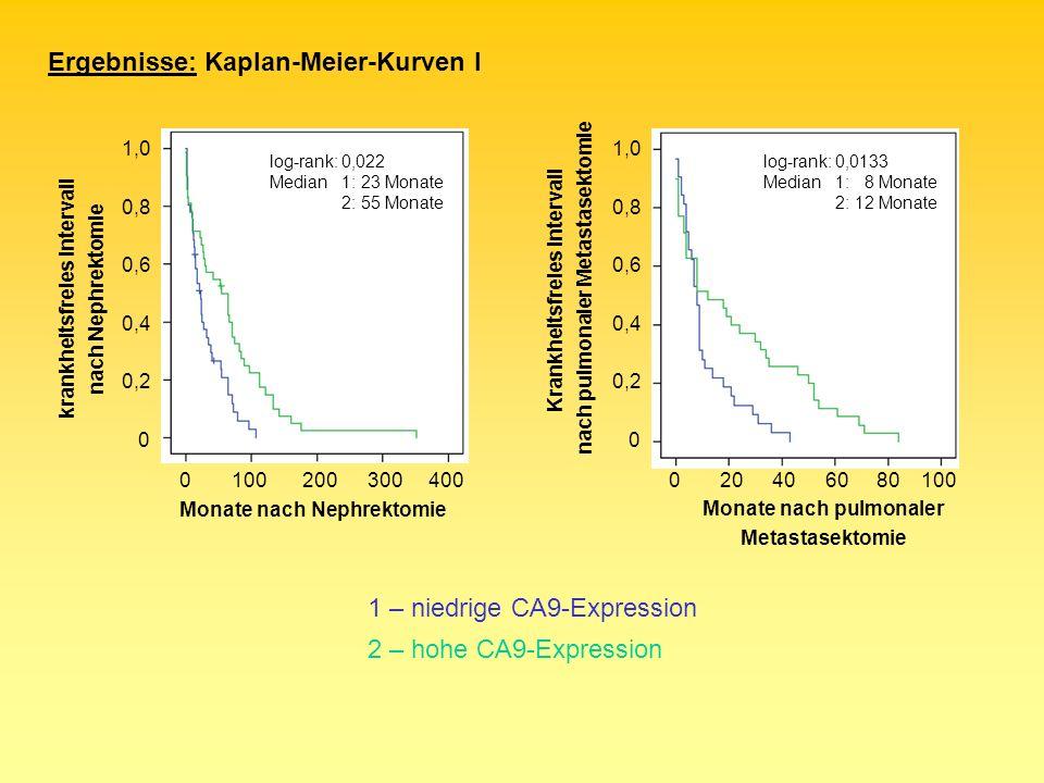 Ergebnisse: Kaplan-Meier-Kurven I 0100200300400 0 0,2 0,4 0,6 0,8 1,0 krankheitsfreies Intervall nach Nephrektomie Monate nach Nephrektomie log-rank: 0,022 Median1: 23 Monate 2: 55 Monate 1 – niedrige CA9-Expression 2 – hohe CA9-Expression 0 0,2 0,4 0,6 0,8 1,0 Krankheitsfreies Intervall nach pulmonaler Metastasektomie 0204060100 Monate nach pulmonaler Metastasektomie 80 log-rank: 0,0133 Median1: 8 Monate 2: 12 Monate