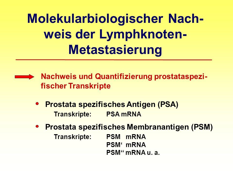 Molekularbiologischer Nach- weis der Lymphknoten- Metastasierung Nachweis und Quantifizierung prostataspezi- fischer Transkripte Prostata spezifisches Antigen (PSA) Transkripte: PSA mRNA Prostata spezifisches Membranantigen (PSM) Transkripte: PSM mRNA PSM mRNA PSM mRNA u.