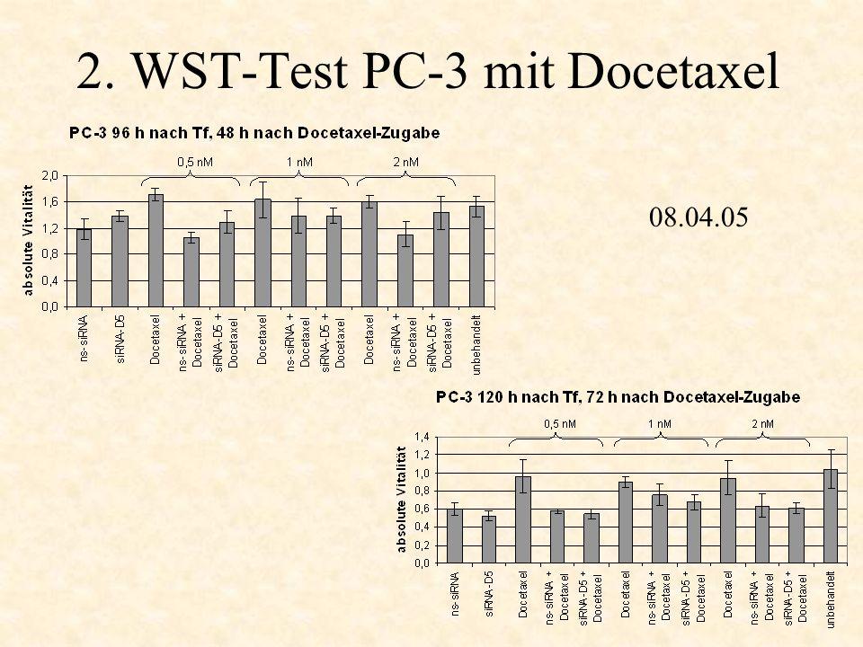 2. WST-Test PC-3 mit Docetaxel 14.04.05