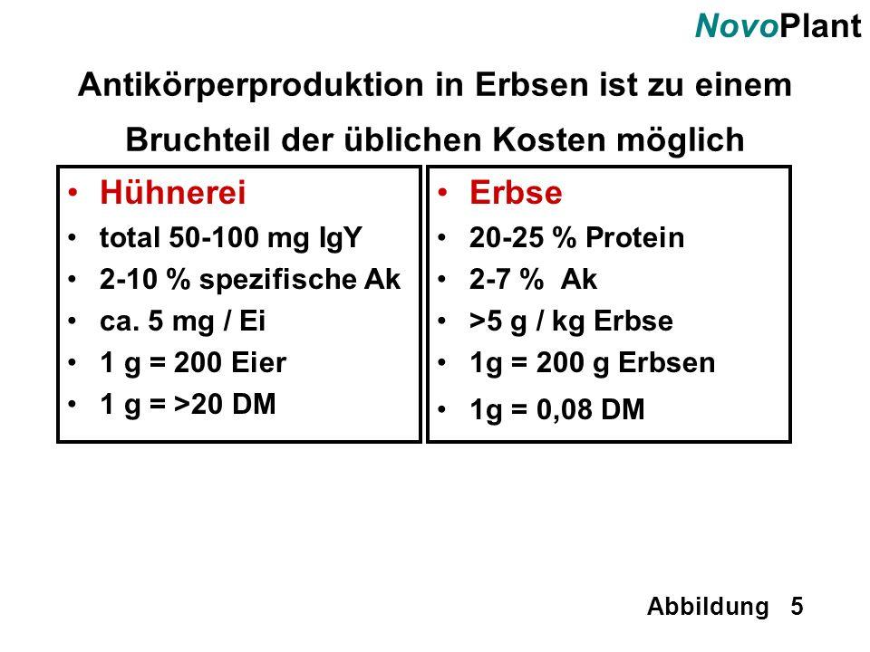 NovoPlant Abbildung 5 Antikörperproduktion in Erbsen ist zu einem Bruchteil der üblichen Kosten möglich Hühnerei total 50-100 mg IgY 2-10 % spezifisch