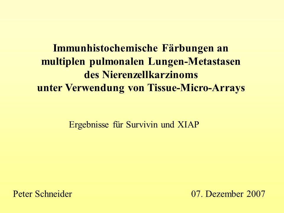Immunhistochemische Färbungen an multiplen pulmonalen Lungen-Metastasen des Nierenzellkarzinoms unter Verwendung von Tissue-Micro-Arrays Ergebnisse fü