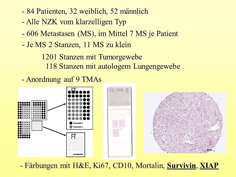 - 84 Patienten, 32 weiblich, 52 männlich - 606 Metastasen (MS), im Mittel 7 MS je Patient - Je MS 2 Stanzen, 11 MS zu klein 1201 Stanzen mit Tumorgewe