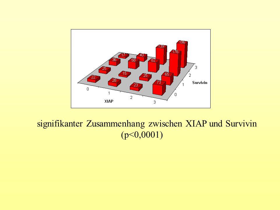 signifikanter Zusammenhang zwischen XIAP und Survivin (p<0,0001)
