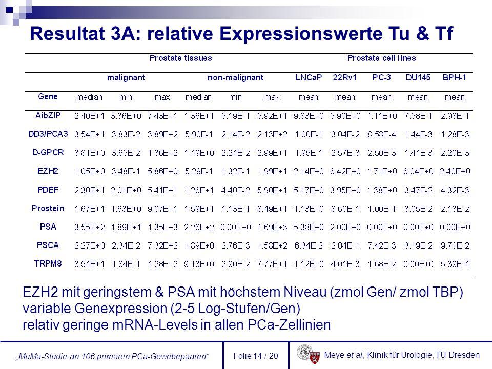 Meye et al, Klinik für Urologie, TU Dresden MuMa-Studie an 106 primären PCa-Gewebepaaren Folie 14 / 20 Resultat 3A: relative Expressionswerte Tu & Tf