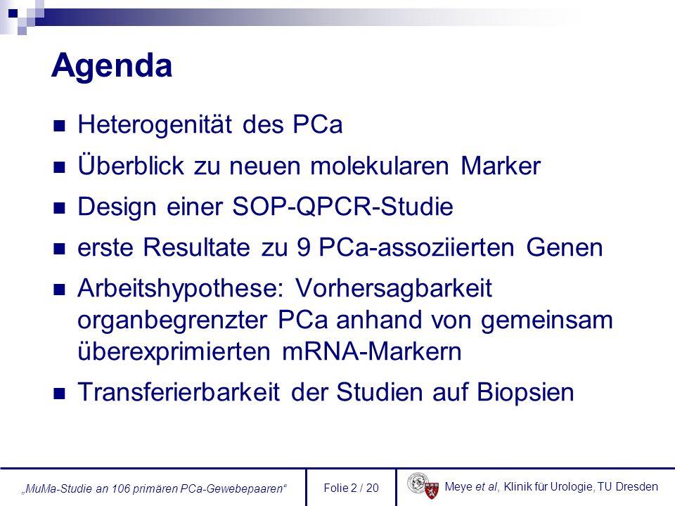 Meye et al, Klinik für Urologie, TU Dresden MuMa-Studie an 106 primären PCa-Gewebepaaren Folie 23 / 20 Weitere Schritte Gewebepaare Erweiterung des Patientenkollektivs auf 150 Patienten (cDNA-Bank!) Messung von weiteren PCa-assoziierten Markern, ggf.