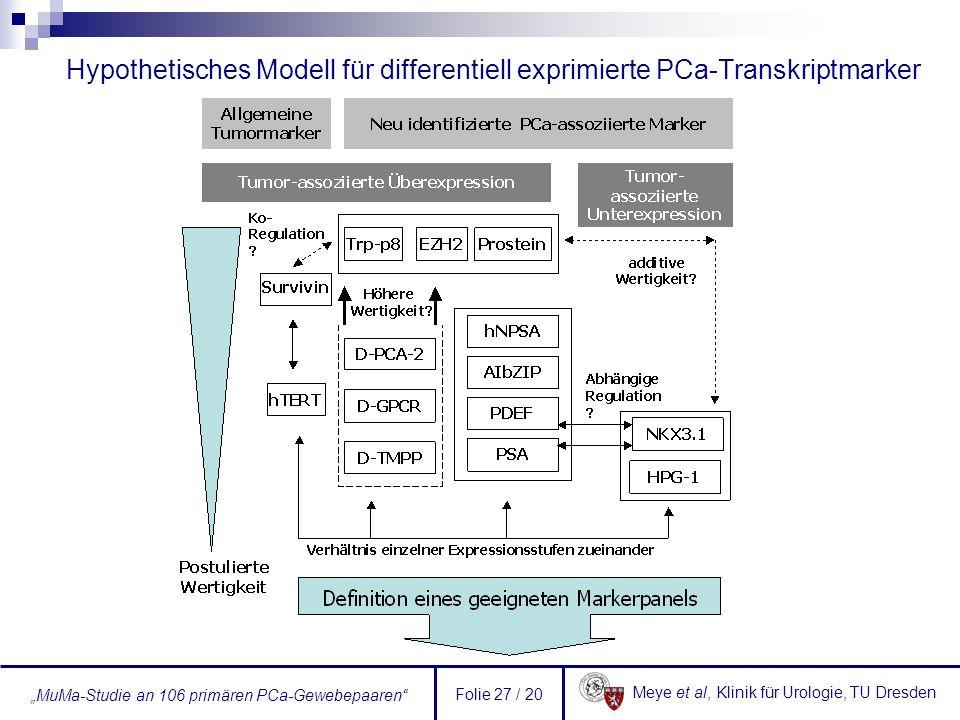 Meye et al, Klinik für Urologie, TU Dresden MuMa-Studie an 106 primären PCa-Gewebepaaren Folie 27 / 20 Hypothetisches Modell für differentiell exprimi